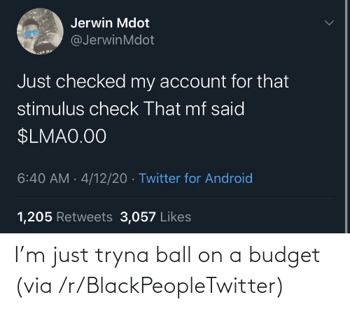 Budget: I'm just tryna ball on a budget (via /r/BlackPeopleTwitter)