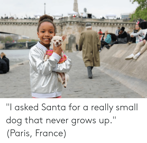 "Dank, France, and Paris: ""I asked Santa for a really small dog that never grows up.""  (Paris, France)"