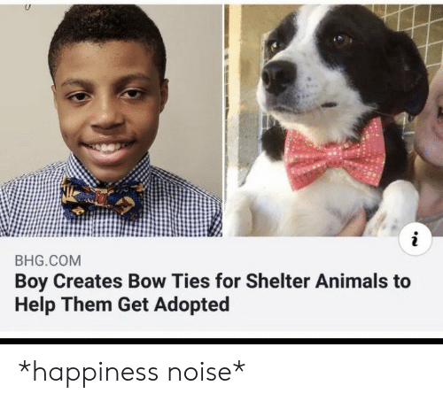 Animals, Help, and Happiness: i  BHG.COM  Boy Creates Bow Ties for Shelter Animals to  Help Them Get Adopted *happiness noise*