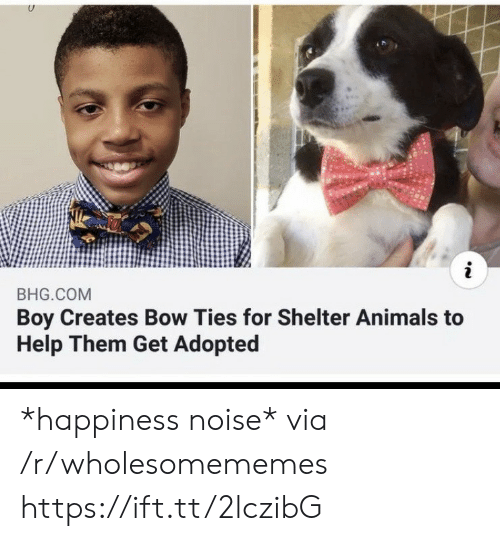 Animals, Help, and Happiness: i  BHG.COM  Boy Creates Bow Ties for Shelter Animals to  Help Them Get Adopted *happiness noise* via /r/wholesomememes https://ift.tt/2lczibG