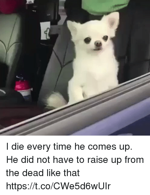 Time, Girl Memes, and Did: I die every time he comes up. He did not have to raise up from the dead like that https://t.co/CWe5d6wUIr