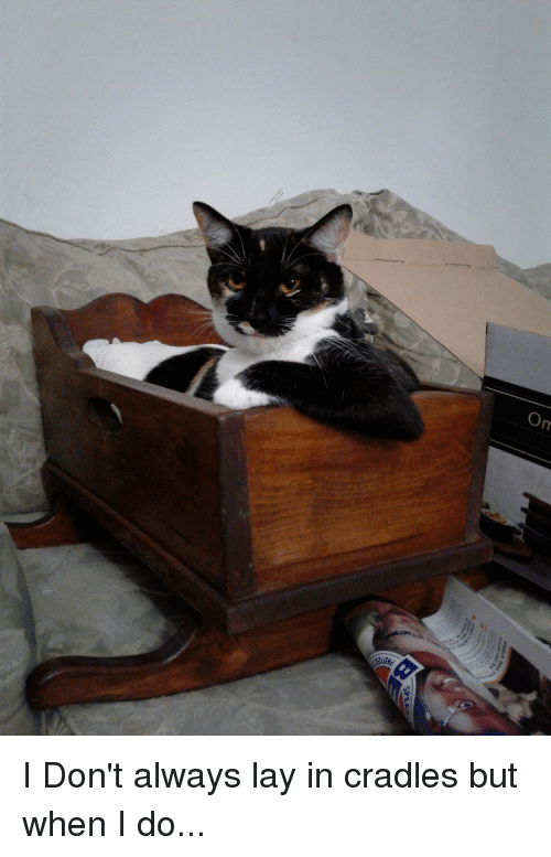 i dont always: I Don't always lay in cradles but when I do...