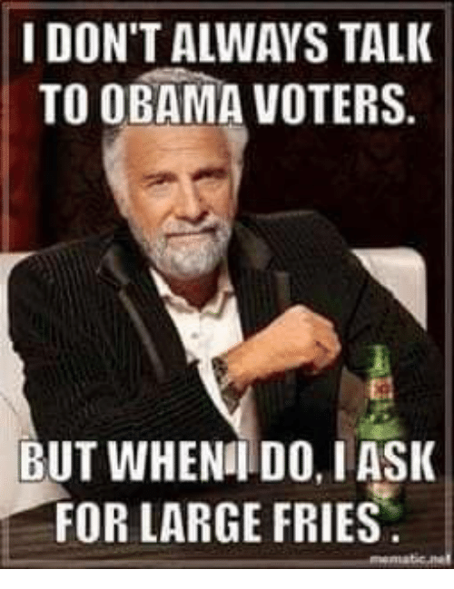 i dont always: I DON'T ALWAYS TALK  TO OBAMA VOTERS.  BUT WHENI DO, IASK  FOR LARGE FRIES