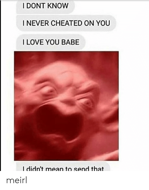 i love you babe: I DONT KNOW  I NEVER CHEATED ON YOU  I LOVE YOU BABE  I didn't mean to send that meirl