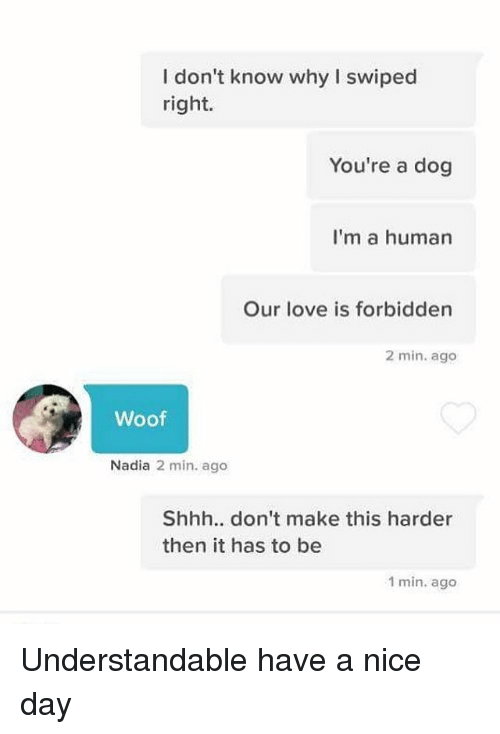 woofing: I don't know why I swiped  right.  You're a dog  I'm a human  Our love is forbidden  2 min. ago  Woof  Nadia 2 min. ago  Shhh.. don't make this harder  then it has to be  1 min. ago Understandable have a nice day