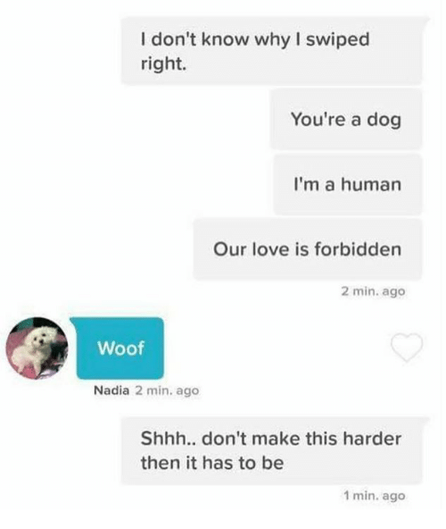 woofing: I don't know why I swiped  right.  You're a dog  I'm a human  Our love is forbidden  2 min. ago  Woof  Nadia 2 min. ago  Shhh.. don't make this harder  then it has to be  1 min. ago