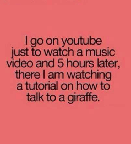 Dank, Music, and youtube.com: I go on youtube  just to watch a music  video and 5 hours later  there I am watching  a tutorial on how to  talk to a giraffe.
