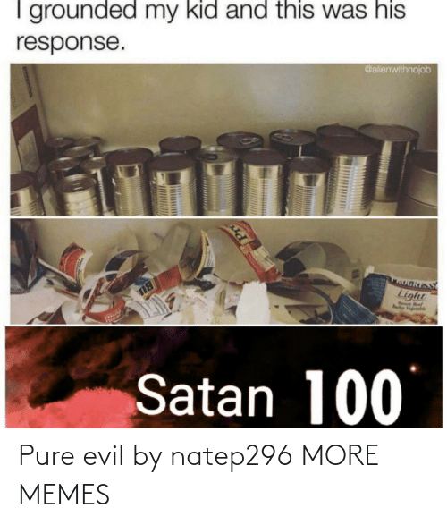 pure: I grounded my kid and this was his  @alienwithnojob  response.  OאוS  Light  Nry Beef  Rarley Vgetahle  BU  Satan 100 Pure evil by natep296 MORE MEMES