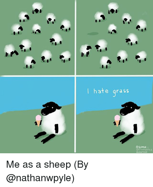 Grasse: I hate grass  eSAMIR  BuzzFCLO Me as a sheep (By @nathanwpyle)