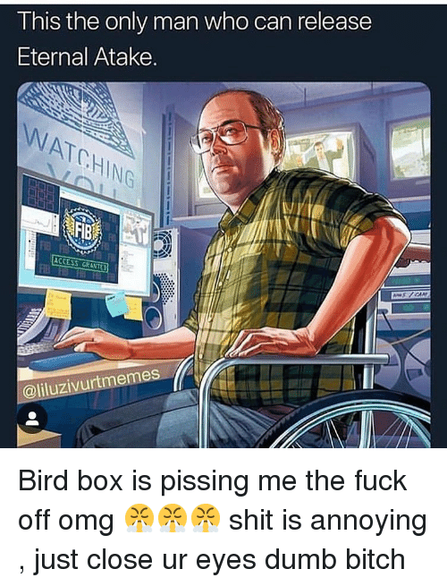 Bitch, Dumb, and Omg: I his the only man who can release  Eternal Atake.  NATCHING  @liluzivurtmemes Bird box is pissing me the fuck off omg 😤😤😤 shit is annoying , just close ur eyes dumb bitch