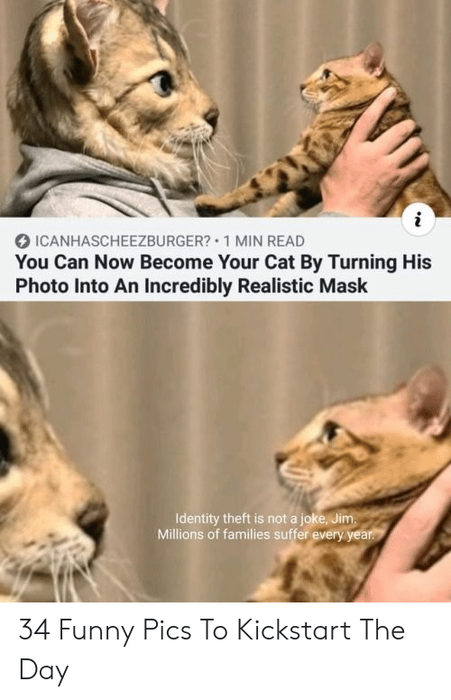 Funny, Mask, and Cat: i  ICANHASCHEEZBURGER? 1 MIN READ  You Can Now Become Your Cat By Turning His  Photo Into An Incredibly Realistic Mask  Identity theft is not a joke, Jim.  Millions of families suffer every year. 34 Funny Pics To Kickstart The Day