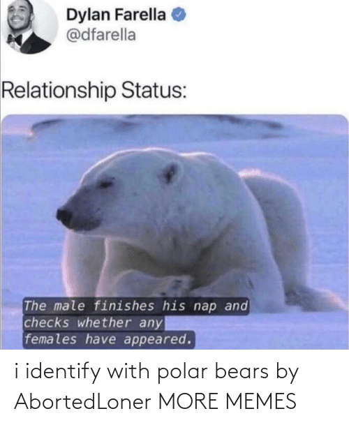 With: i identify with polar bears by AbortedLoner MORE MEMES