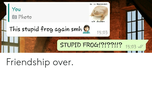 Dude, Smh, and Wednesday: I+ is Wednesday,  You  Photo  mv dude  This stupid frog again smh  15:03  STUPID FROG!?!??!!? 15:03 Friendship over.