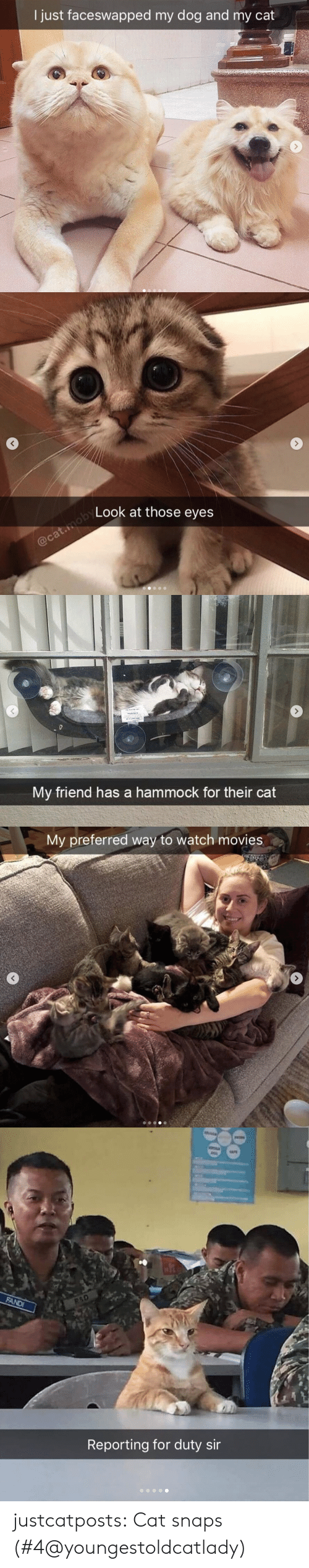 Instagram, Movies, and Target: I just faceswapped my dog and my cat   Look at those eyes   My friend has a hammock for their cat   My preferred way to watch movies   Reporting for duty sir justcatposts: Cat snaps (#4@youngestoldcatlady)