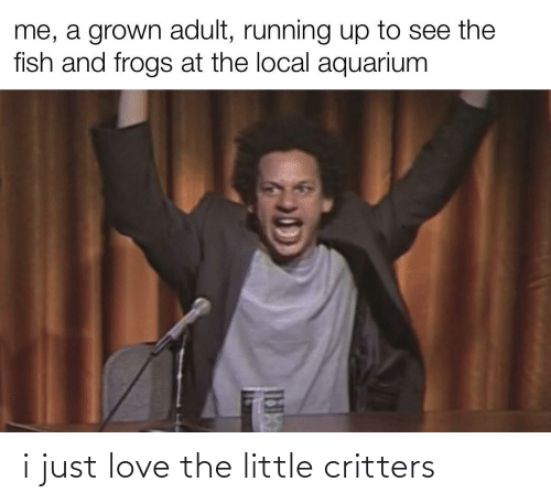 just: i just love the little critters