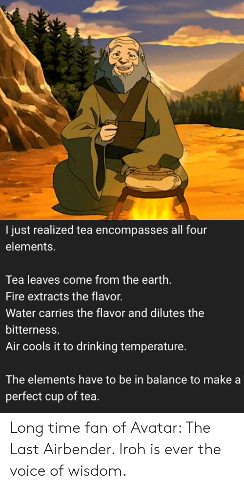 Drinking, Fire, and The Last Airbender: I just realized tea encompasses all four  elements.  Tea leaves come from the earth.  Fire extracts the flavor.  Water carries the flavor and dilutes the  bitterness.  Air cools it to drinking temperature.  The elements have to be in balance to make a  perfect cup of tea. Long time fan of Avatar: The Last Airbender. Iroh is ever the voice of wisdom.