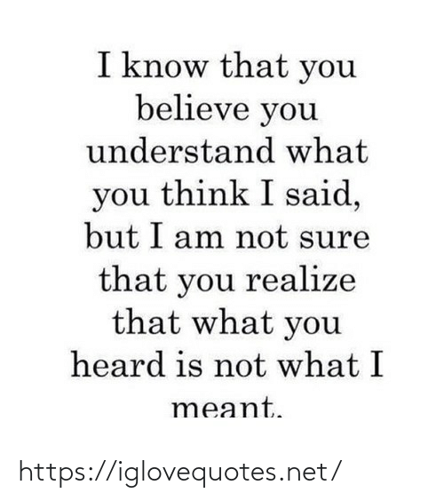 Am Not: I know that you  believe you  understand what  you think I said,  but I am not sure  that you realize  that what you  heard is not what I  meant. https://iglovequotes.net/