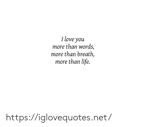I Love You: I love you  more than words,  more than breath,  more than life. https://iglovequotes.net/