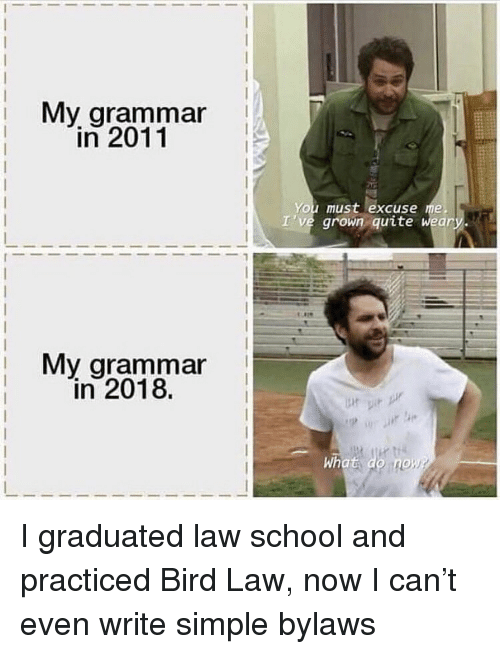 Law School: i My arammar  in 2011  You must excuse me  I've grown quite weary.  My grammar  in 2018.  What do no I graduated law school and practiced Bird Law, now I can't even write simple bylaws