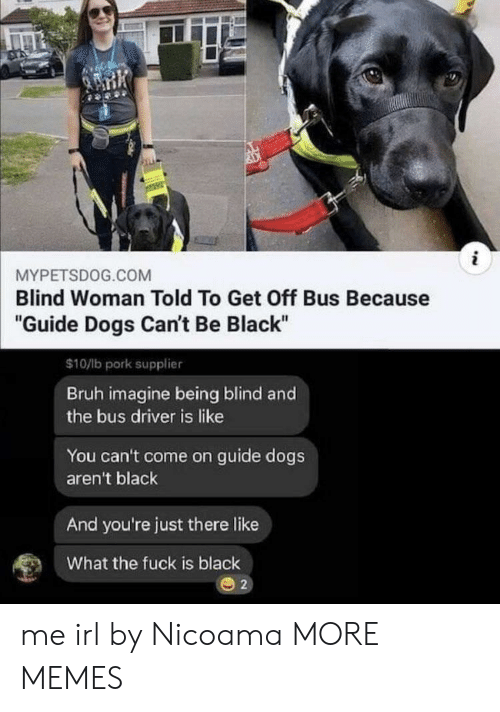 """pork: i  MYPETSDOG.COM  Blind Woman Told To Get Off Bus Because  """"Guide Dogs Can't Be Black""""  $10/lb pork supplier  Bruh imagine being blind and  the bus driver is like  You can't come on guide dogs  aren't black  And you're just there like  What the fuck is black  2 me irl by Nicoama MORE MEMES"""