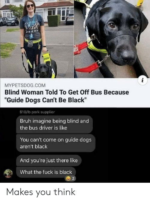 """pork: i  MYPETSDOG.COM  Blind Woman Told To Get Off Bus Because  """"Guide Dogs Can't Be Black""""  $10/lb pork supplier  Bruh imagine being blind and  the bus driver is like  You can't come on guide dogs  aren't black  And you're just there like  What the fuck is black  2 Makes you think"""
