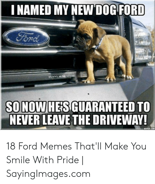 Ford Memes Funny: I NAMED MY NEW DOG FORD  SO NOW HEIS GUARANTEED TO  NEVER LEAVE THE DRIVEWAY! 18 Ford Memes That'll Make You Smile With Pride | SayingImages.com