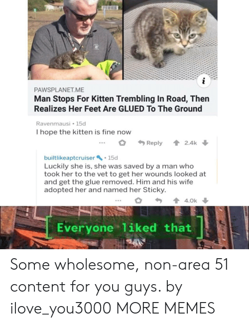 Wholesome: i  PAWSPLANET.ME  Man Stops For Kitten Trembling In Road, Then  Realizes Her Feet Are GLUED To The Ground  Ravenmausi 15d  I hope the kitten is fine now  2.4k  Reply  builtlikeaptcruiser 15d  Luckily she is, she was saved by a man who  took her to the vet to get her wounds looked at  and get the glue removed. Him and his wife  adopted her and named her Sticky  4.0k  Everyone 1iked that Some wholesome, non-area 51 content for you guys. by ilove_you3000 MORE MEMES