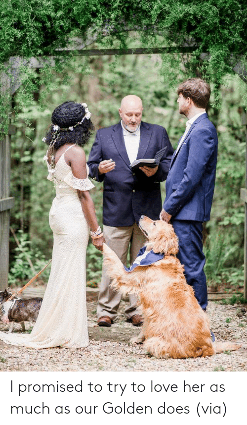 www: I promised to try to love her as much as our Golden does(via)