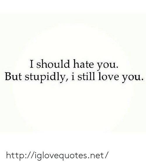 I Still Love You: I should hate you.  But stupidly, i still love you. http://iglovequotes.net/