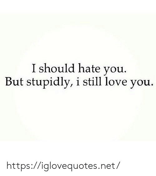still-love-you: I should hate you.  But stupidly, i still love you. https://iglovequotes.net/