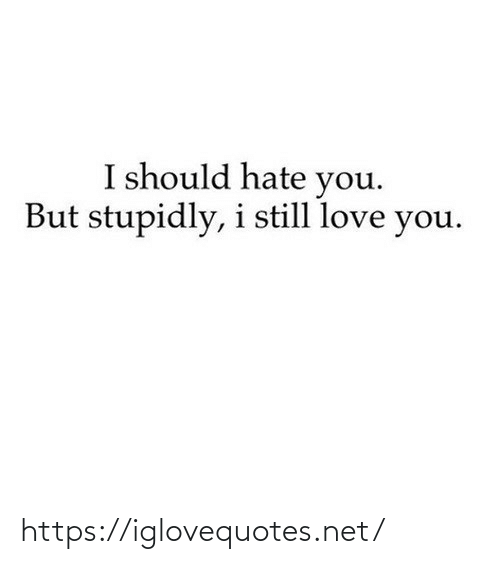 love you: I should hate you.  But stupidly, i still love you. https://iglovequotes.net/