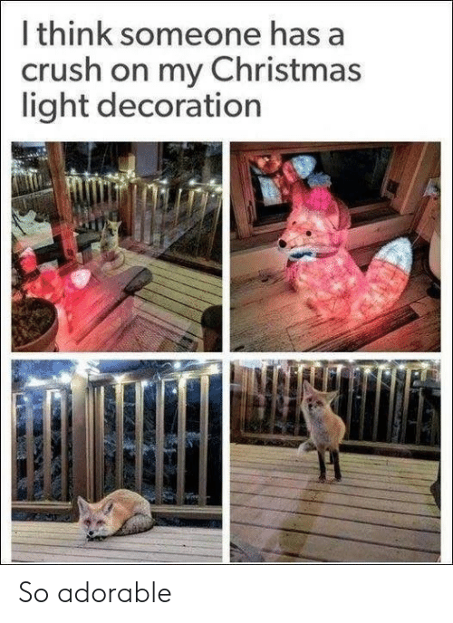 Decoration: I think someone has a  crush on my Christmas  light decoration So adorable