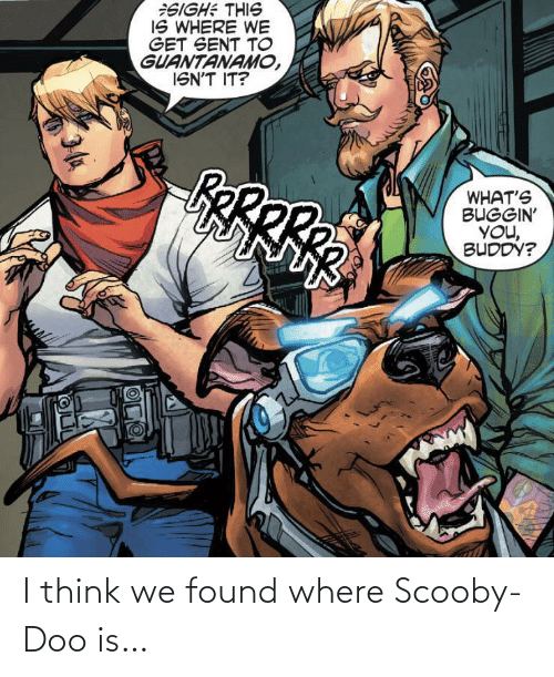think: I think we found where Scooby-Doo is…