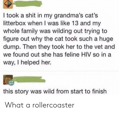 Cats, Family, and Shit: I took a shit in my grandma's cat's  litterbox when I was like 13 and my  whole family was wilding out trying to  figure out why the cat took such a huge  dump. Then they took her to the vet and  we found out she has feline HIV so in a  way, I helped her.  this story was wild from start to finish What a rollercoaster