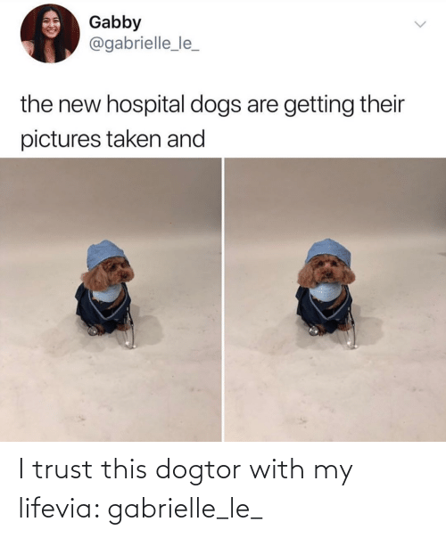 my life: I trust this dogtor with my lifevia: gabrielle_le_