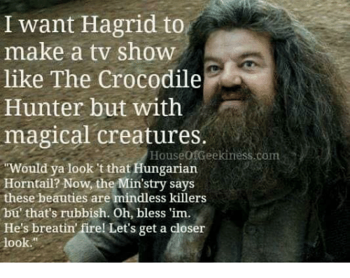 """Hungarian: I want Hagrid to  like The Crocodile  magical creatures.  make a tv show  Hunter but with  HouseofGeekiness.com  Would ya look 't that Hungarian  Horntail? Now, the Min'stry says  these beauties are mindless killers  bu' that's rubbish. Oh, bless 'im.  He's breatin firel Let's get a closer  look."""""""