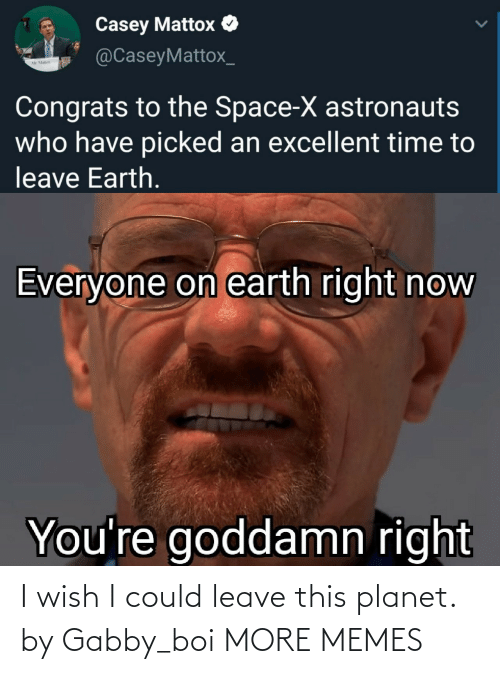 Wish: I wish I could leave this planet. by Gabby_boi MORE MEMES