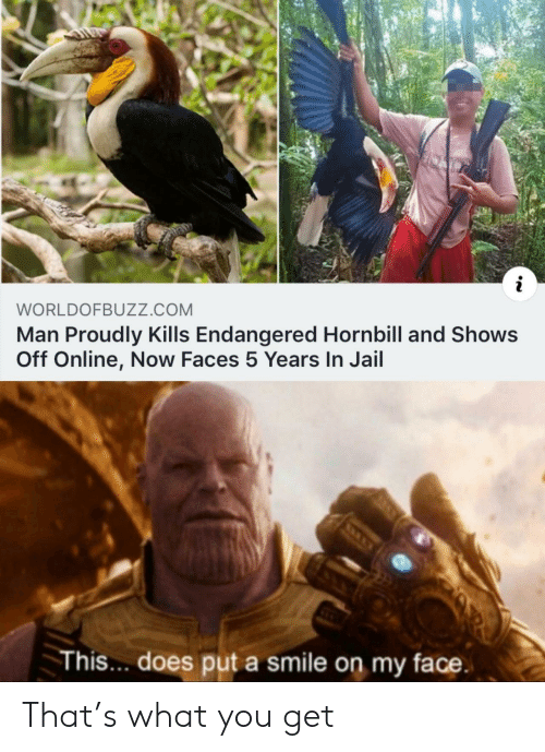 Jail, Smile, and Com: i  WORLDOFBUZZ.cOM  Man Proudly Kills Endangered Hornbill and Shows  Off Online, Now Faces 5 Years In Jail  This.. does put a smile on my face That's what you get