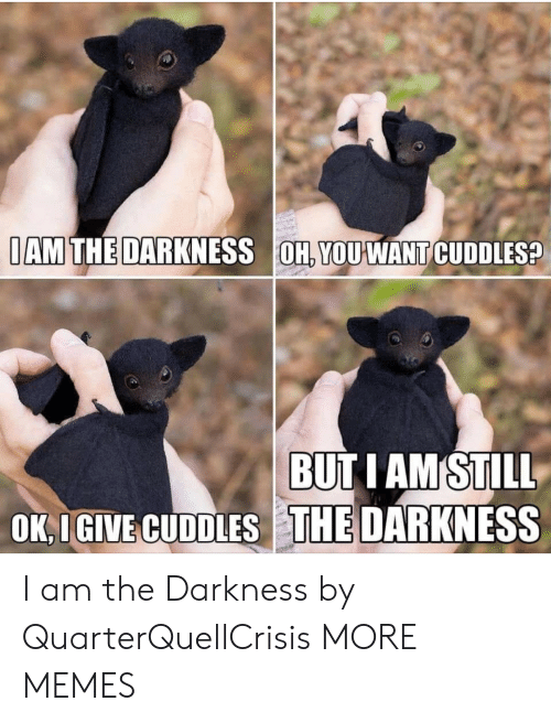 Dank, Memes, and Target: IAM THE DARKNESS OH, YOUWANT CUDDLES?  BUTIAM STILL  OK, I GIVE CUDDLES THE DARKNESS I am the Darkness by QuarterQuellCrisis MORE MEMES
