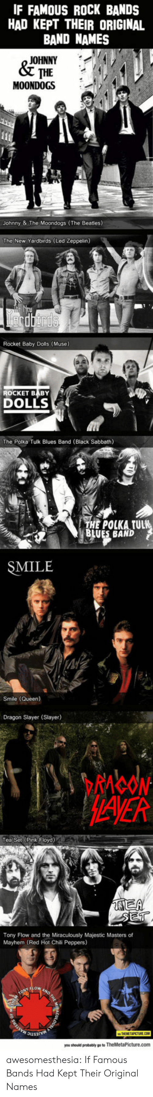 Pink Floyd: IF FAMOUS ROCK BANDS  HAD KEPT THEIR ORIGINAL  BAND NAMES  JOHNNY  & THE  MOONDOGS  111  Johnny & The Moondogs (The Beatles)  The New Yardbirds (Led Zeppelin)  rdrds  Rocket Baby Dolls (Muse)  ROCKET BABY  DOLLS  The Polka Tulk Blues Band (Black Sabbath)  THE POLKA TULK  BLUES BAND  SMILE  Smile (Queen)  Dragon Slayer (Slayer)  MAVER  Tea Set (Pink Floyd)  AEA  SET  Tony Flow and the Miraculously Majestic Masters of  Mayhem (Red Hot Chili Peppers)  ONYOW AND  MAJESTIC  MASTERS  you should probably go to TheMetaPicture.com awesomesthesia:  If Famous Bands Had Kept Their Original Names