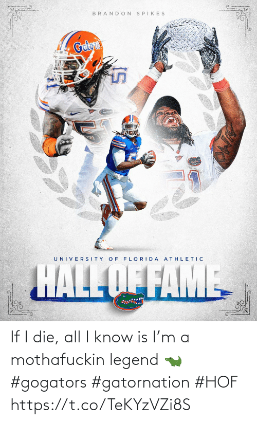 If I: If I die, all I know is I'm a mothafuckin legend 🐊 #gogators #gatornation #HOF https://t.co/TeKYzVZi8S