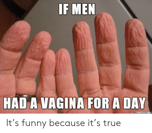 Funny, True, and Imgur: IF MEN  HAD A VAGINA FOR A DAY  made on imgur It's funny because it's true