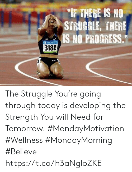 """Love for Quotes: """"IF THERE IS NO  STRUGGLE, THERE  IS NO PROGRESS.""""  3188 The Struggle You're going through  today is developing the Strength  You will Need for Tomorrow.  #MondayMotivation #Wellness  #MondayMorning #Believe https://t.co/h3aNgloZKE"""
