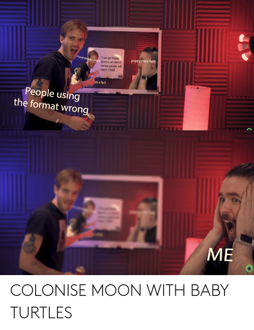 Meme, Moon, and Baby: if we get Keanu  Pewdiepiesubmiasions Reeves on meme  poppy mary ham  review pewds will  reach 100M  ats a fact  People using  the format wrong  ME COLONISE MOON WITH BABY TURTLES