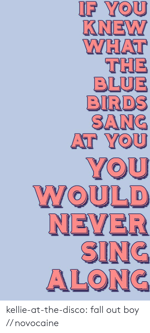Kellie: IF YOU  KNEW  WHAT  THE  BLUE  BIRDS  SANC  AT YOU kellie-at-the-disco:  fall out boy // novocaine
