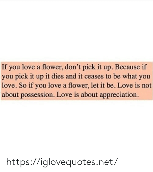 Love Is: If you love a flower, don't pick it up. Because if  you pick it up it dies and it ceases to be what you  love. So if you love a flower, let it be. Love is not  about possession. Love is about appreciation. https://iglovequotes.net/