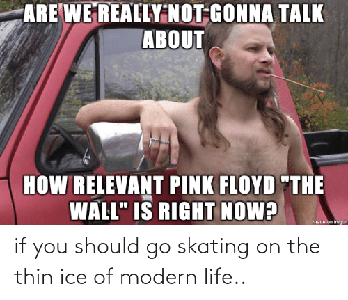 Life: if you should go skating on the thin ice of modern life..