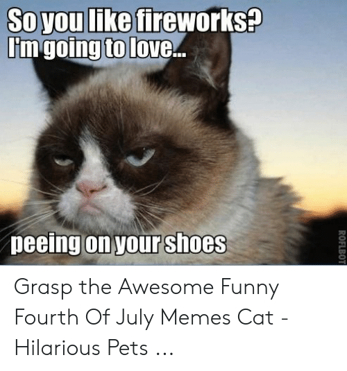 25 Best Memes About Funny Fourth Of July Memes Funny Fourth Of