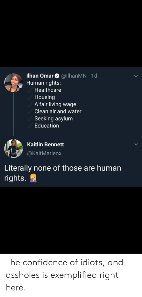 Confidence, Facepalm, and Water: Ilhan Omar @lhanMN 1d  Human rights:  .  Healthcare  Housing  A fair living wage  Clean air and water  Seeking asylum  Education  Kaitlin Bennett  @KaitMarieox  Literally none of those are human  rights. The confidence of idiots, and assholes is exemplified right here.