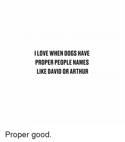 Arthur, Dogs, and Memes: ILOVE WHEN DOGS HAVE  PROPER PEOPLE NAMES  LIKE DAVID OR ARTHUR Proper good.